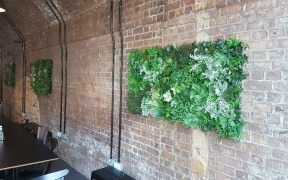 Living Walls for International Fashion Studio