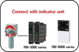 RM-6000 Fixed detection system for Combustible Gases including Hydrogen
